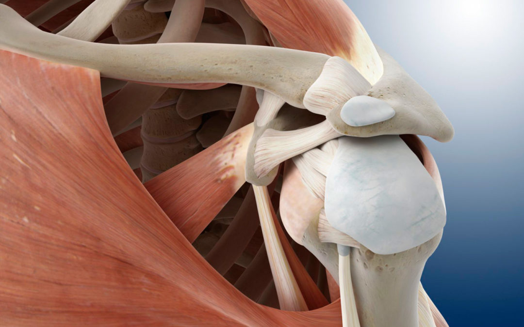 Thinking Practitioner Podcast, Ep 37: Shoulder Pain, Impingement, & Rotator Cuff Issues: The Most Common of Problems