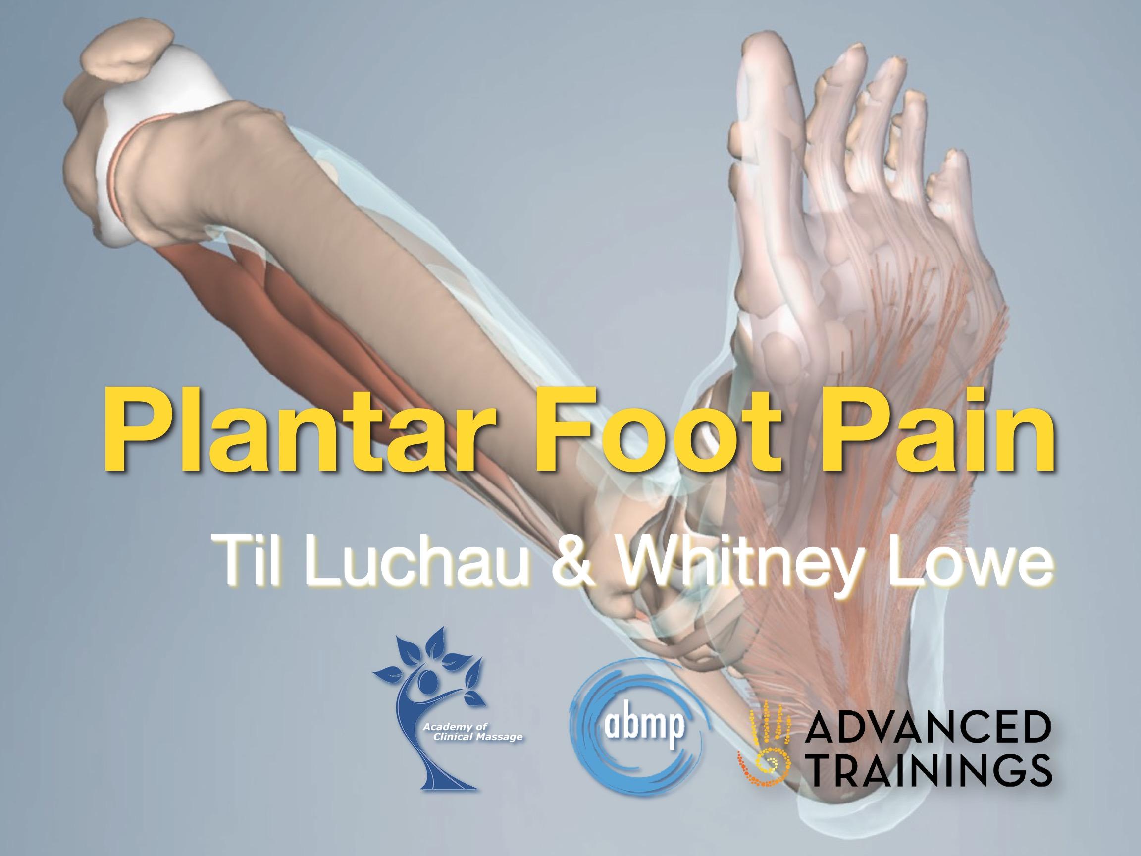 Plantar Foot Pain 1hr Online Course